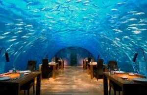Ithaa-Undersea-Restaurant-at-Conrad-Maldives-Rangali