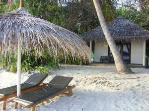 ellaidhoo beachbungalo2